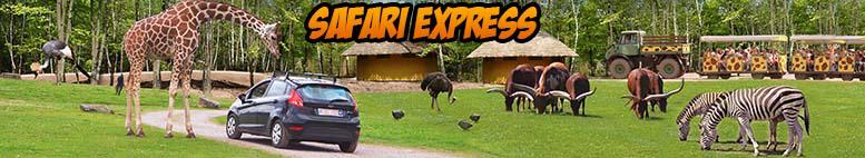 le safari express petit train